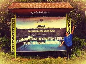 Plang mangrove(doc Hikmah)