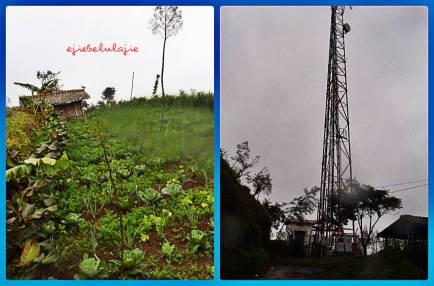 KIKA: Kebun penduduk dan tower. Gambar diambil saat turun dari Gunung Merapi. (doc pribadi)
