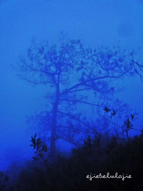 Kabut biru romantis *may i.. remembering u? (doc pribadi)