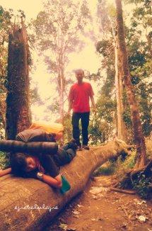 Hiyaaaaaa.... peluk pohon! (doc Ricky Merah)