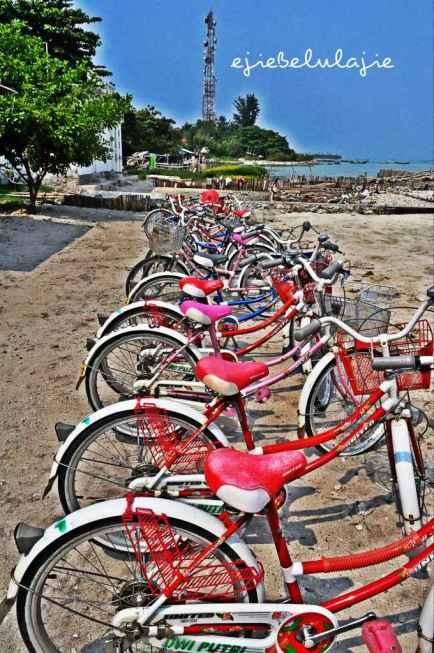 Fasilitas sepeda yang tersedia di Pulau Pari. (doc pribadi)