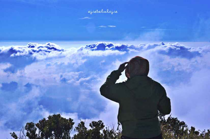 Looking 4 u, out there (doc pribadi)