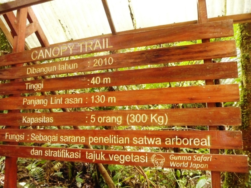 Keterangan canopy trail (doc pribadi)