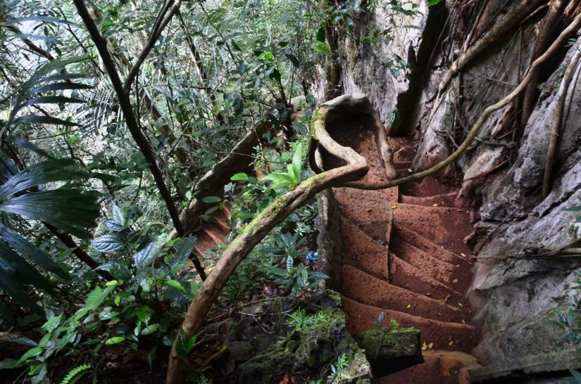 Tangga memutar, penentu sampai di puncak tangga gua. (doc pribadi)