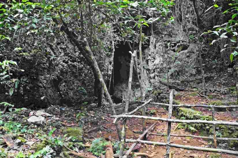 Pintu masuk Gua Istana yang ditumbuhi oleh tanaman. (doc pribadi)
