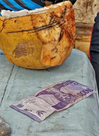 Kalau di kota, harga kelapa begini palingan Rp 8.000,- kan yah? (doc Delima Yoga)