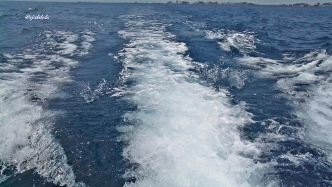 Lepas dari dermaga Pulau Harapan, perahu kami melaju mengarah ke Pulau Dolphin. (doc pribadi)