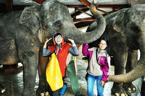 Gajah Taman Safari (doc pribadi)