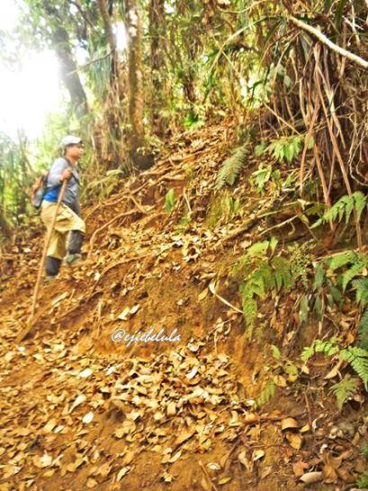 Pos 3 menuju puncak. Kang Ading in pic. (doc pribadi)