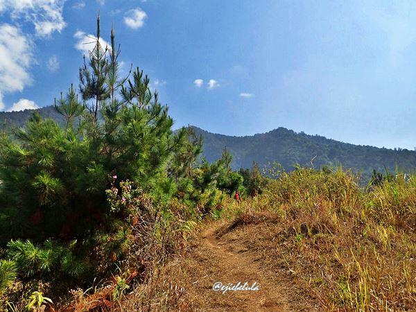 Pendakian awal, Burangrang di kejauhan. (doc Yunita, the sum miter)