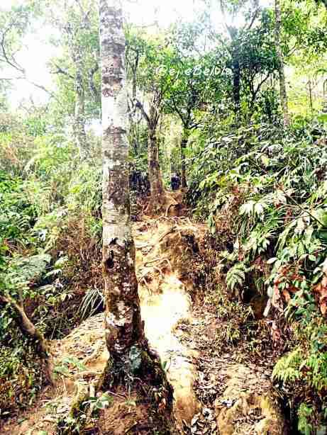 Jalur Gunung Burangrang, Pos 3. (doc pribadi)