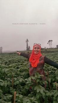 Kebun kentang Agria Doc @pungkyprayitno, taken by @kidtsany