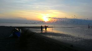 And the birds singing Doc ibu Siti Mualimah