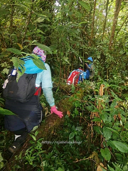 Mulai masuk jalur pendakian sesungguhnya. Doc Ken